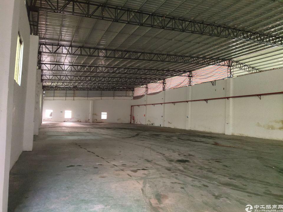 石排镇东江对面9元钢构厂房招租