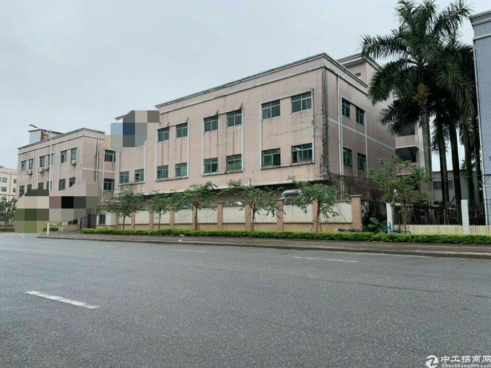 东莞中部区域独立标准厂房2500平米出售