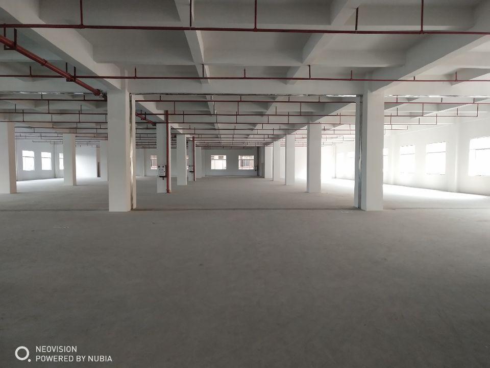 樟木头镇裕丰管理区新出楼上标准厂房2200平方,挨着主干道