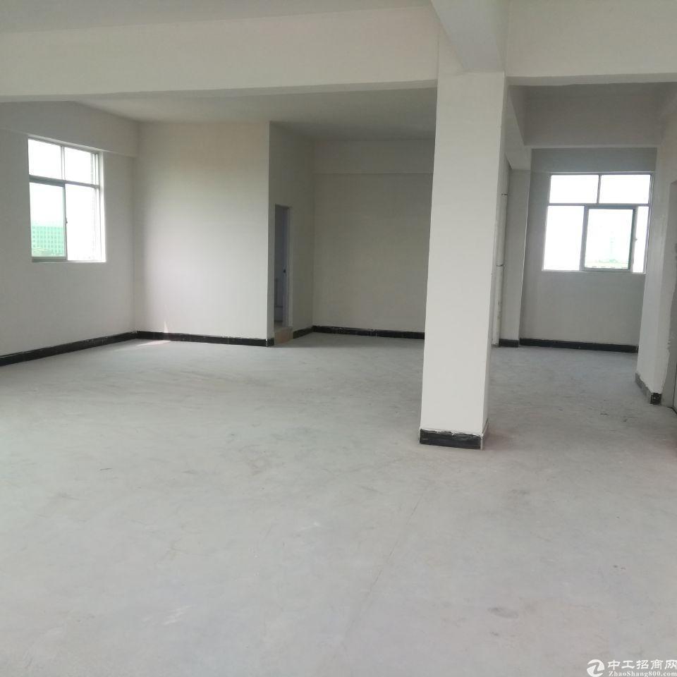 东莞市塘厦凤凰岗全新厂房招租1-7层每350平方小客户的优选