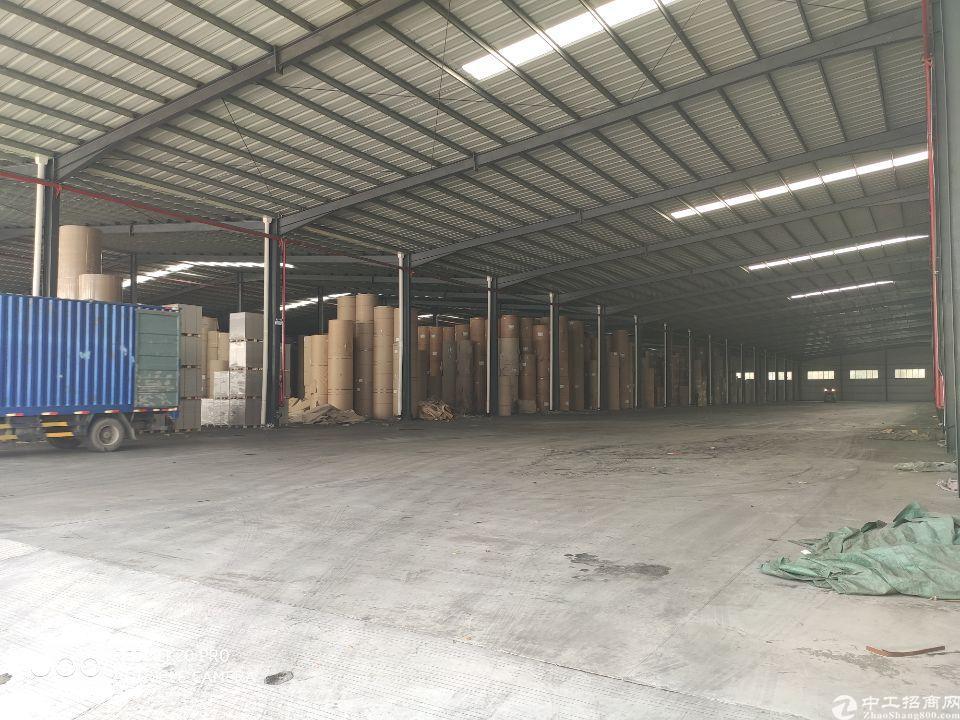 大岭山镇高速路口新出23000平米仓库高度12米