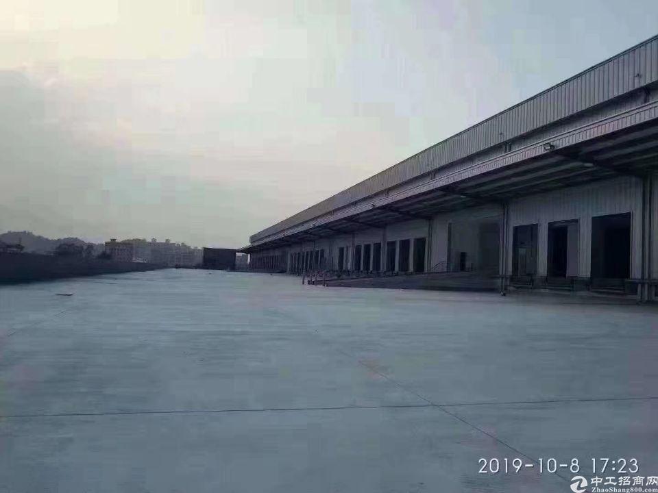 深圳新出原房东直租标准物流仓54000平米150个卸货口