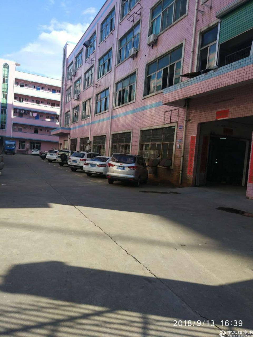 平湖富民工业区标准厂房1300平出租大小分