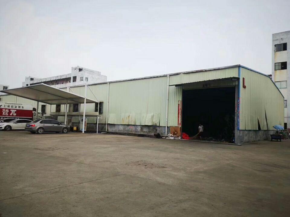 清溪镇超大空地单一层钢结构2200平方可生产可仓库