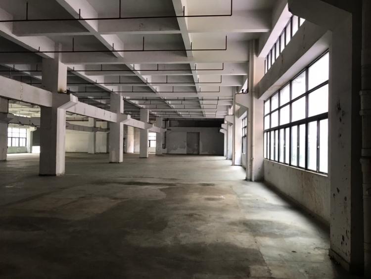 凤岗竹塘一楼2600平米出租