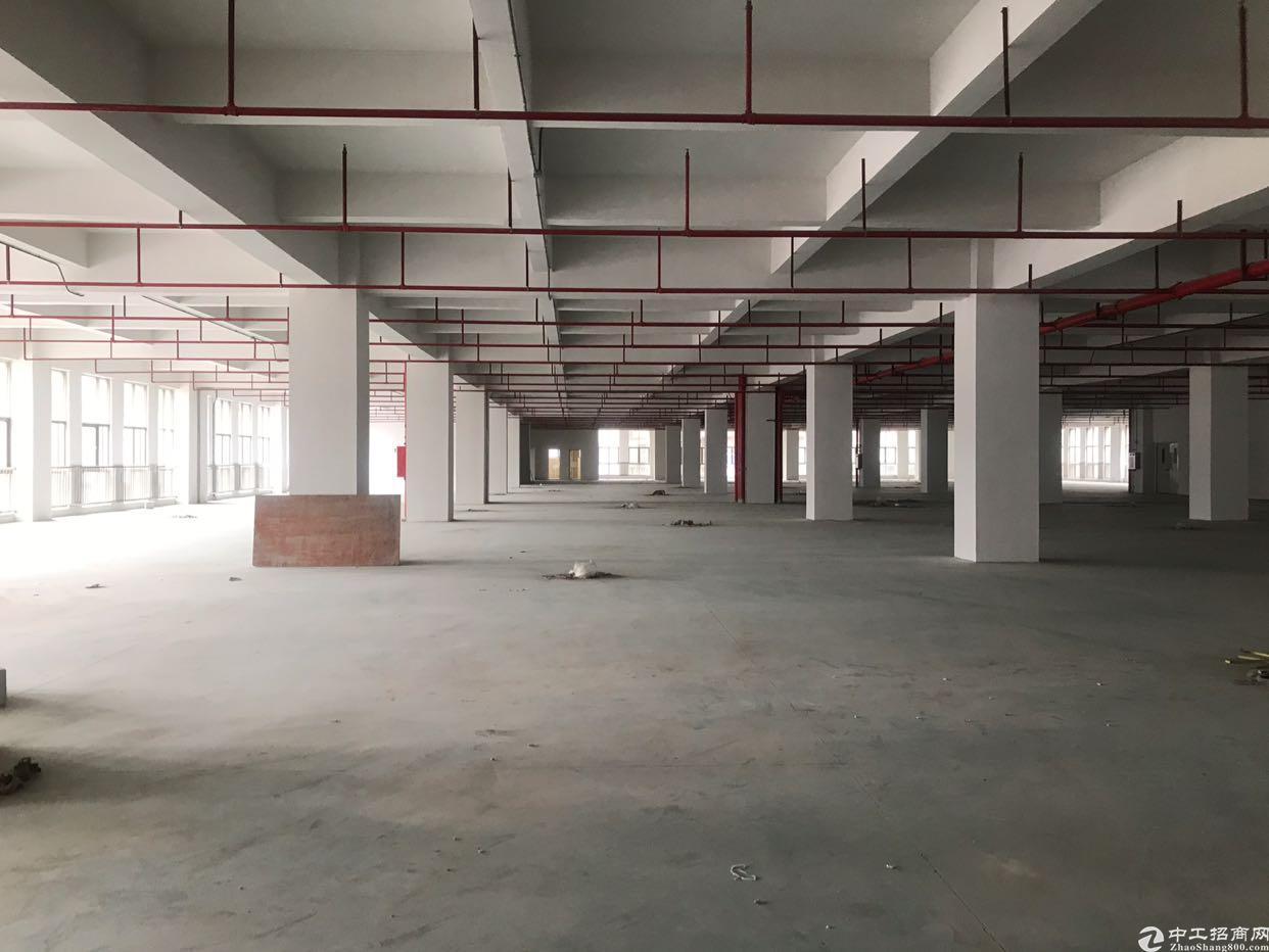 厚街镇下汴高铁附近楼上5000方出租,可分租,有地坪漆