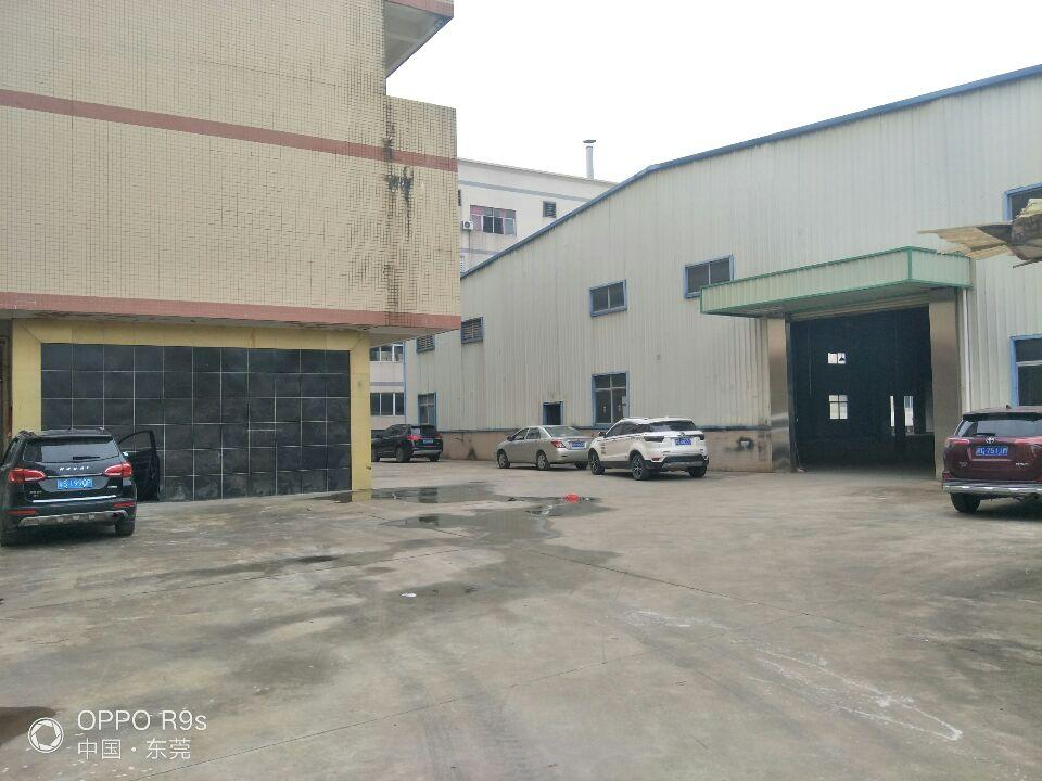 大塘107国道边独院带牛角办公室钢构厂房出租