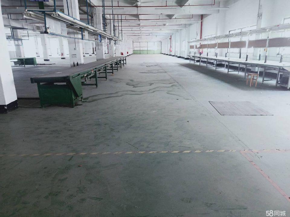 清溪镇中心科技路原房东厂房出租,形象好位置佳