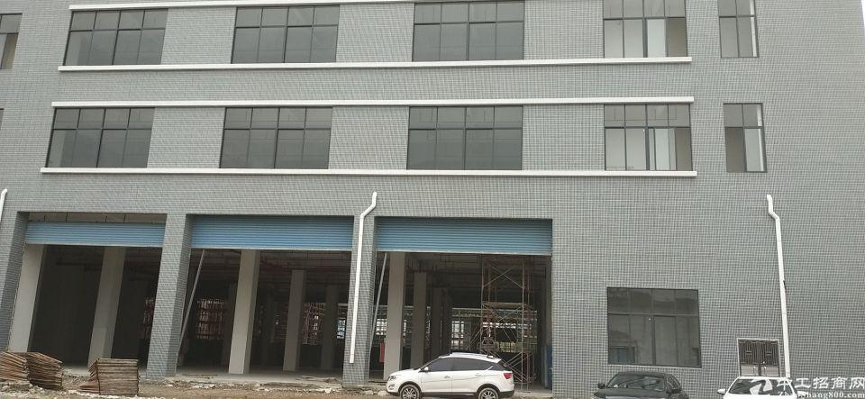 独门独院标准楼房58000平方全新一手房东招租