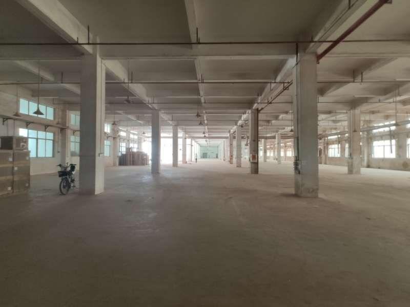 厂房位于马安工业区内,独栋1层500平米,首层高度5.-图3