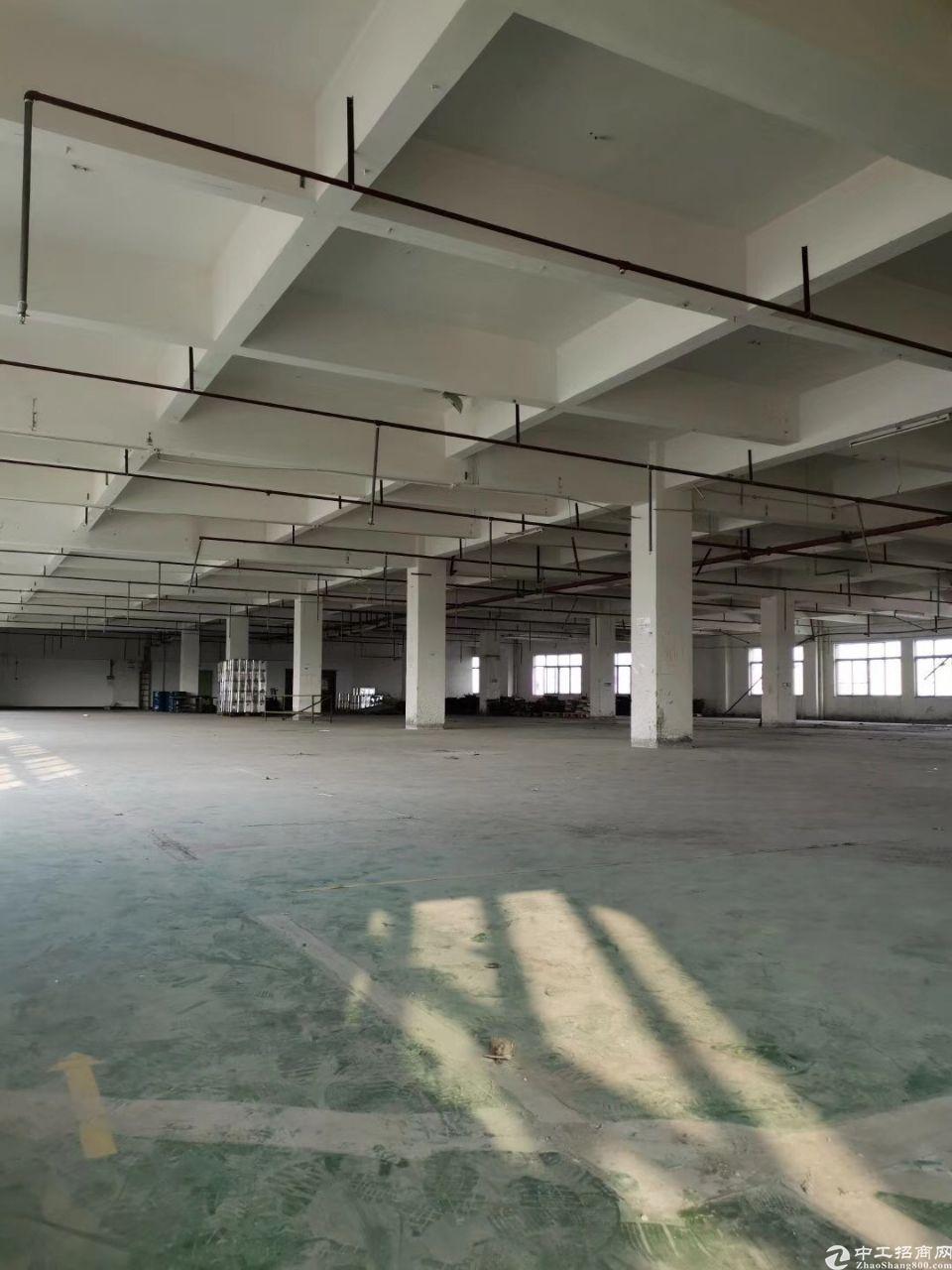 寮步镇向西村一楼标准厂房出租
