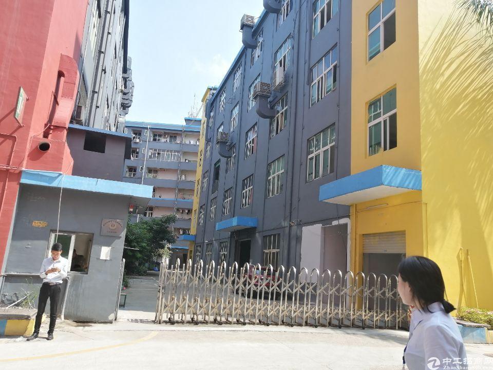 南联地铁站附近新出原房东电商园100-1200平招租,带装修