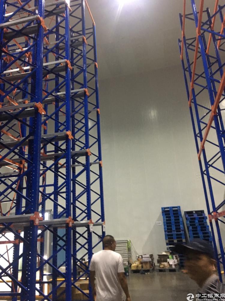 高标准低租金的冷冻冷藏库房,现成八米高货架,十二米高净空