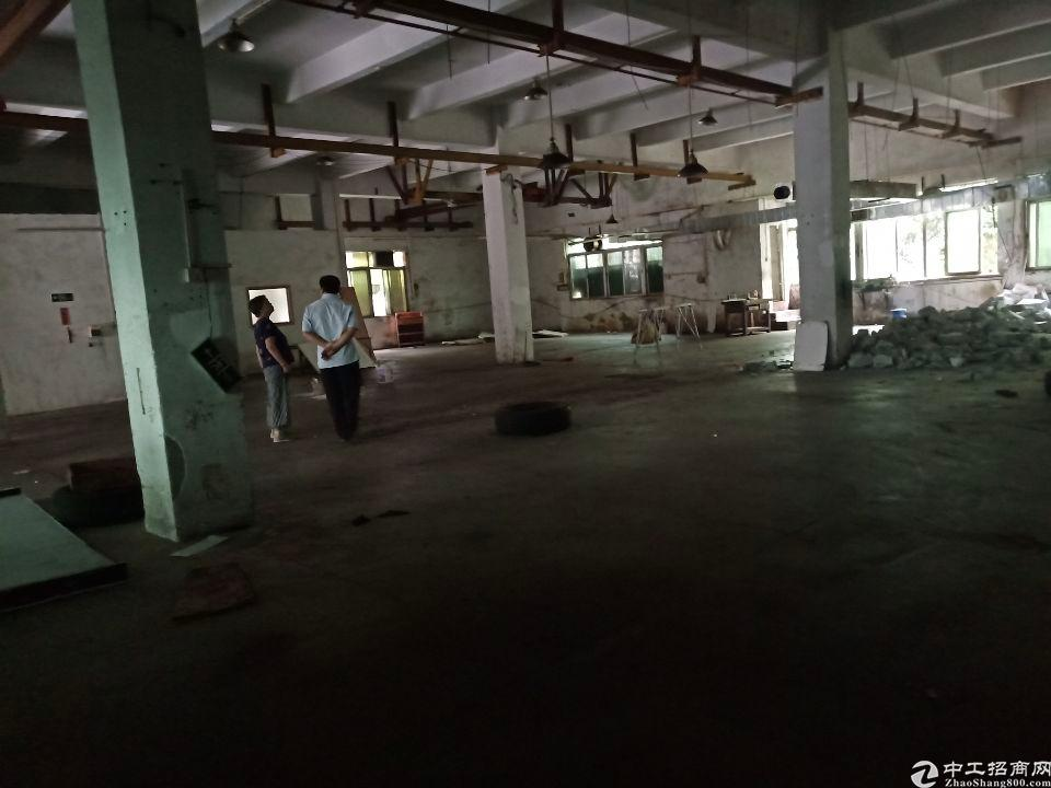 虎门镇东风新出一楼厂房招租