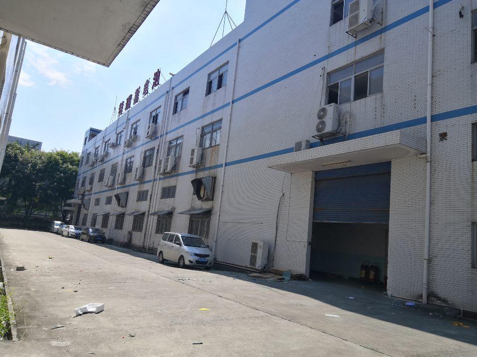 清溪三中6米高一楼920平带消防喷淋,周围配套齐,可办环评