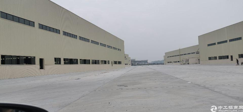 佛山顺德15万平厂房出租,证件齐全,滴水12米,可办环评-图4