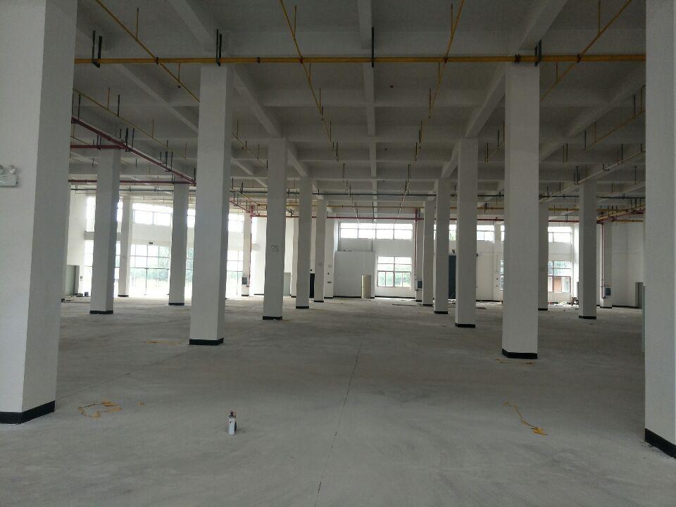吴家山仓库1万平单层2500平米。四部电梯三吨交通便利