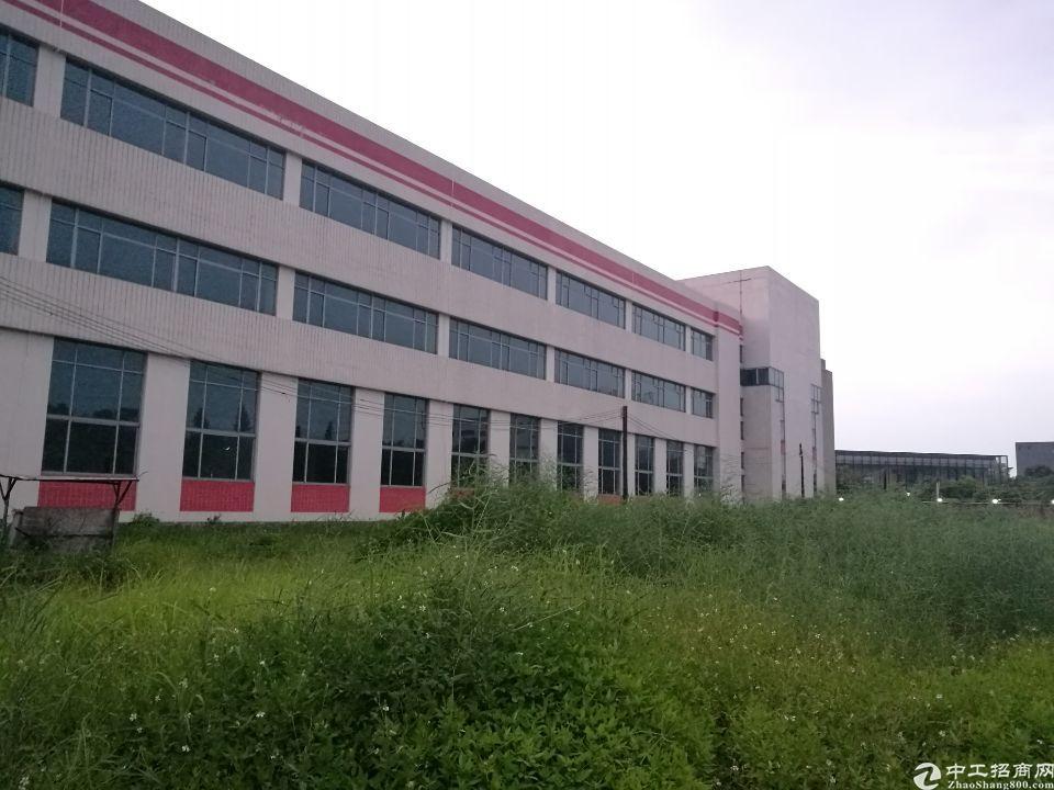 惠州博罗新出国有双证厂房地块