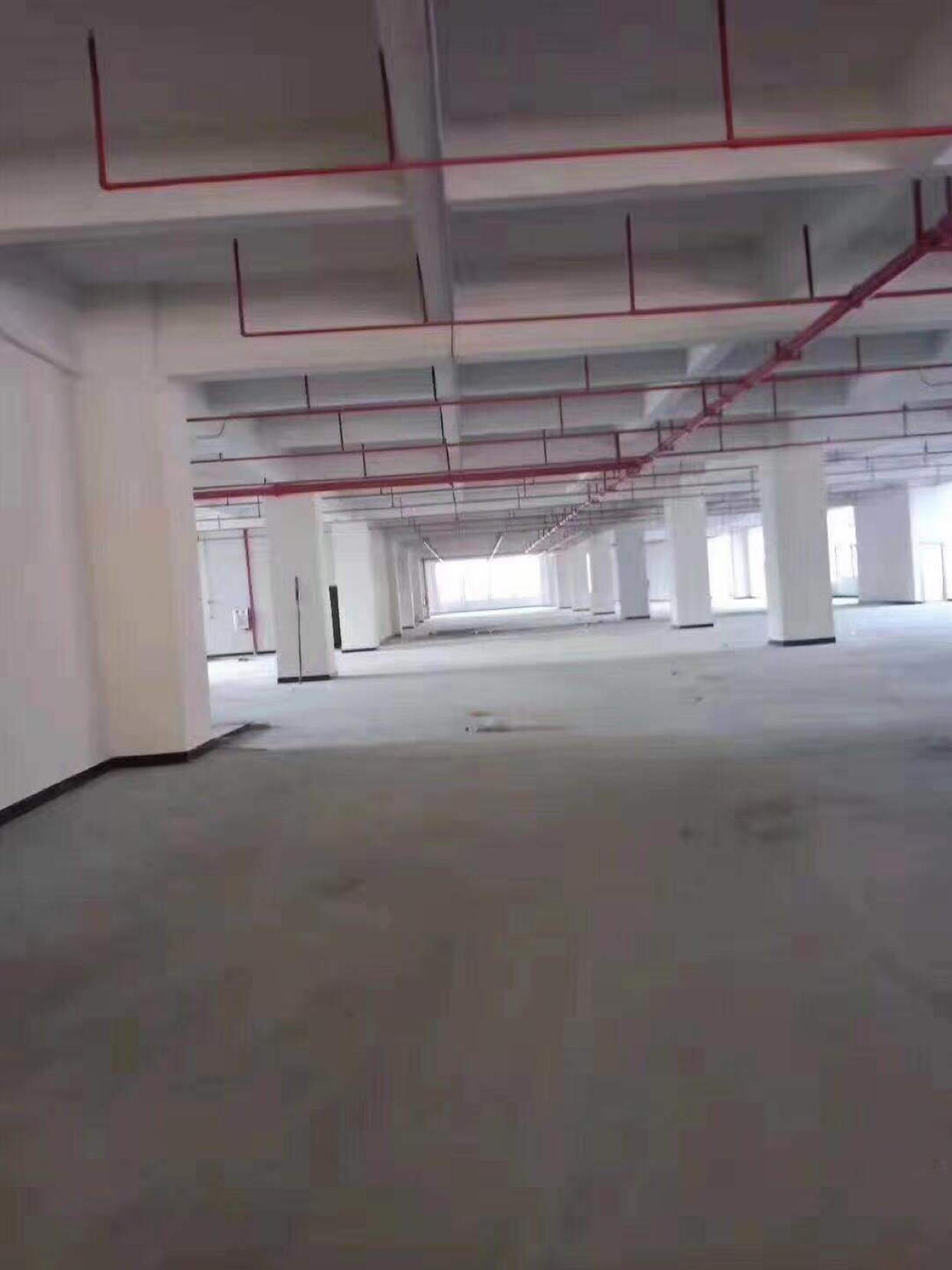 全新厂房。超大空地。五万平方。大小可分