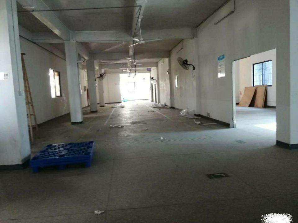 樟木头百果洞社区,3楼450平,有电梯,有地坪漆,租12块
