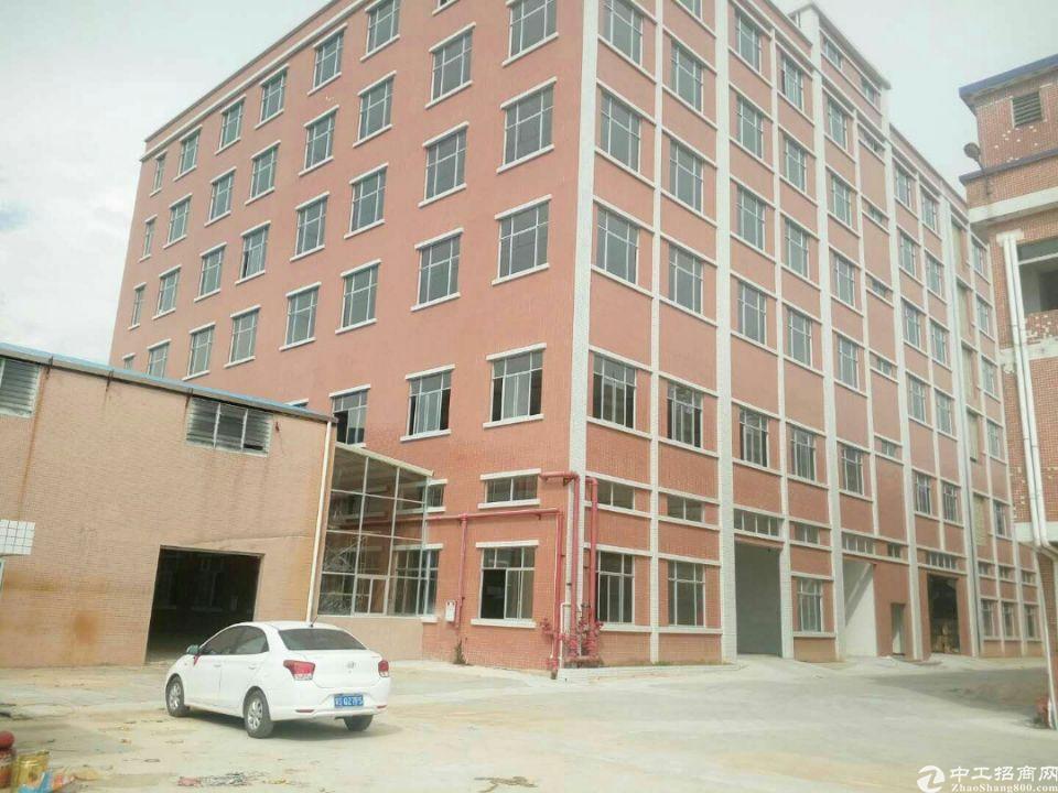 桥头镇标准厂房4300平方厂房出租。