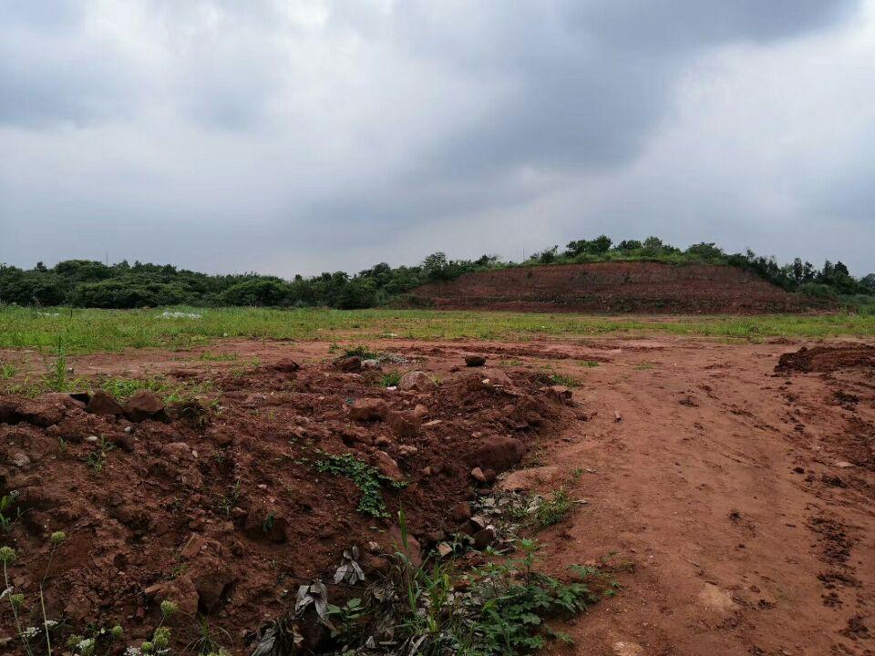 广汉十亩工业土地出售