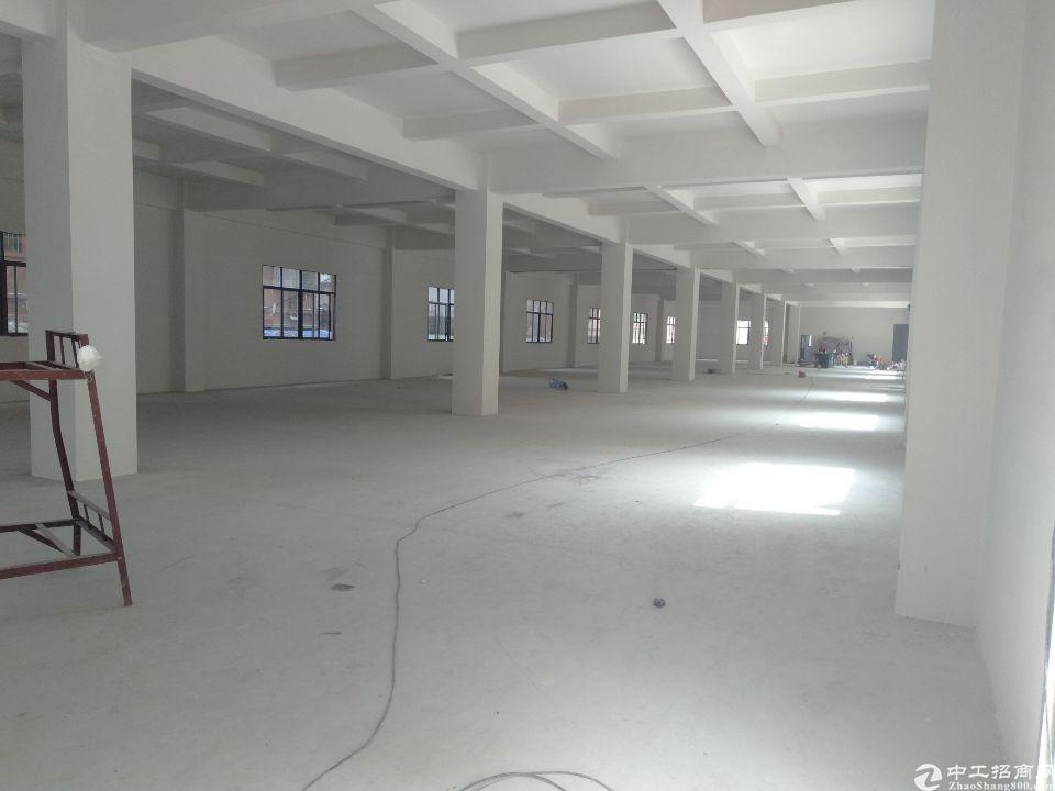 樟木头镇金河管理区有标准厂房三楼1200平左右厂房出租