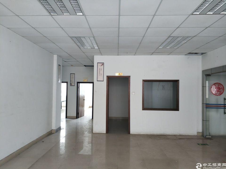 观澜茜坑带办公室装修厂房400平