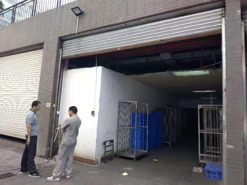 清湖大和路新出一楼800平带冷库适合食品类仓库