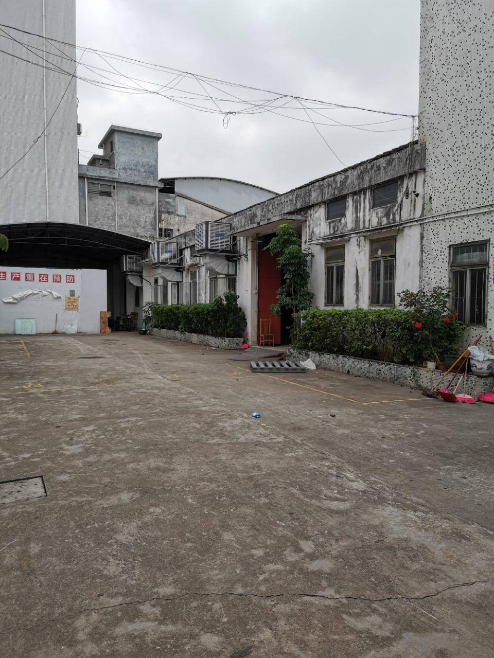 钟村工业区独院钢构厂房800平米,滴水6米