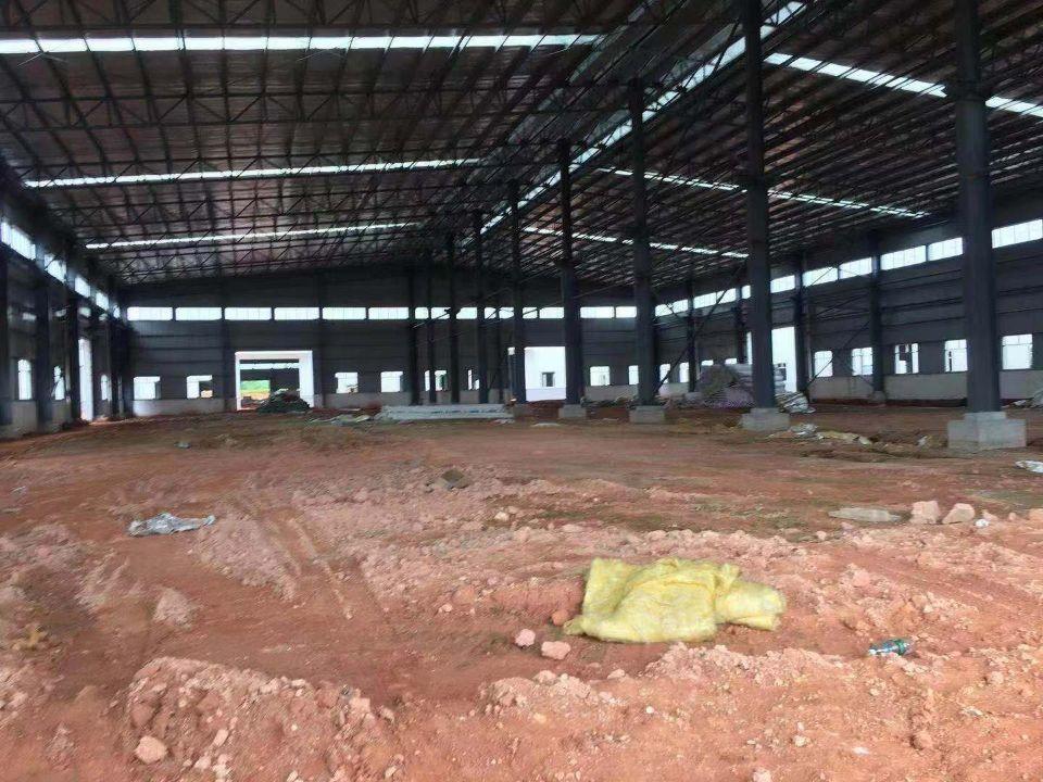 江门新出单一层钢构厂房