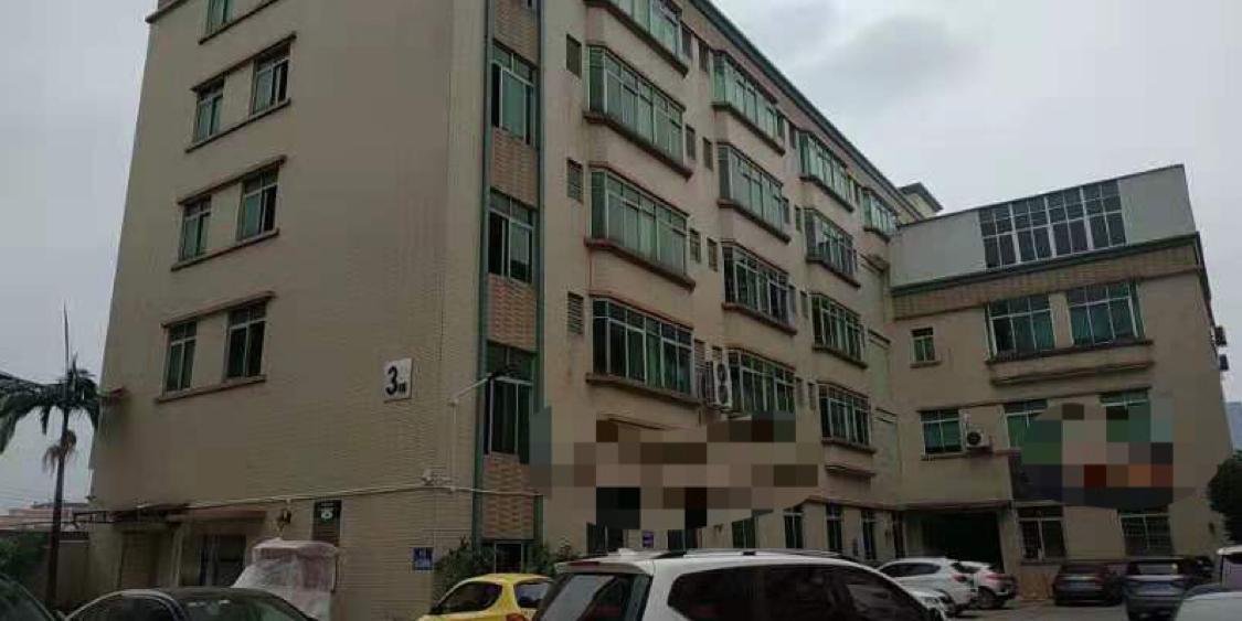 番禺区钟村大型工业园楼上1300方可分租