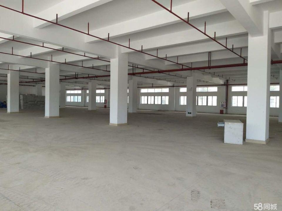 樟洋一楼3600平方厂房招租,可分租,高5.5米