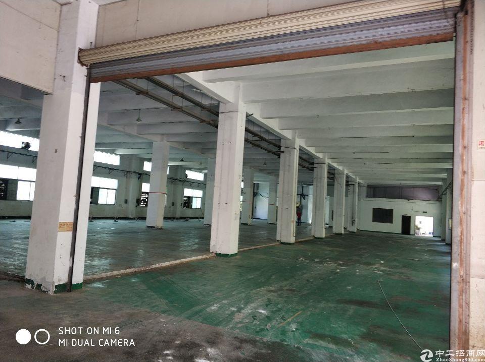 福永塘尾一楼整层3200平方水电到位
