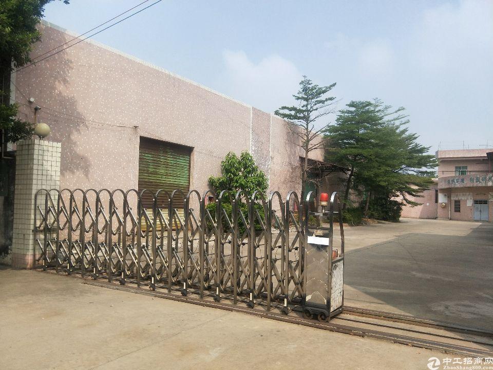 道滘41年村委买地厂房出售仅2200元一平大路边随时可用