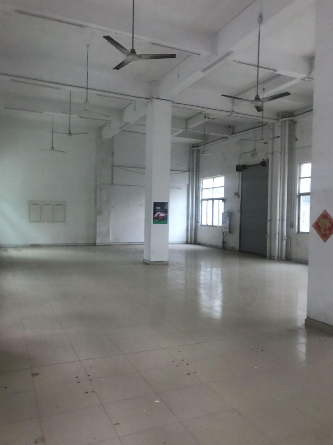 中高6米标准厂房1600方空地800方便宜出租