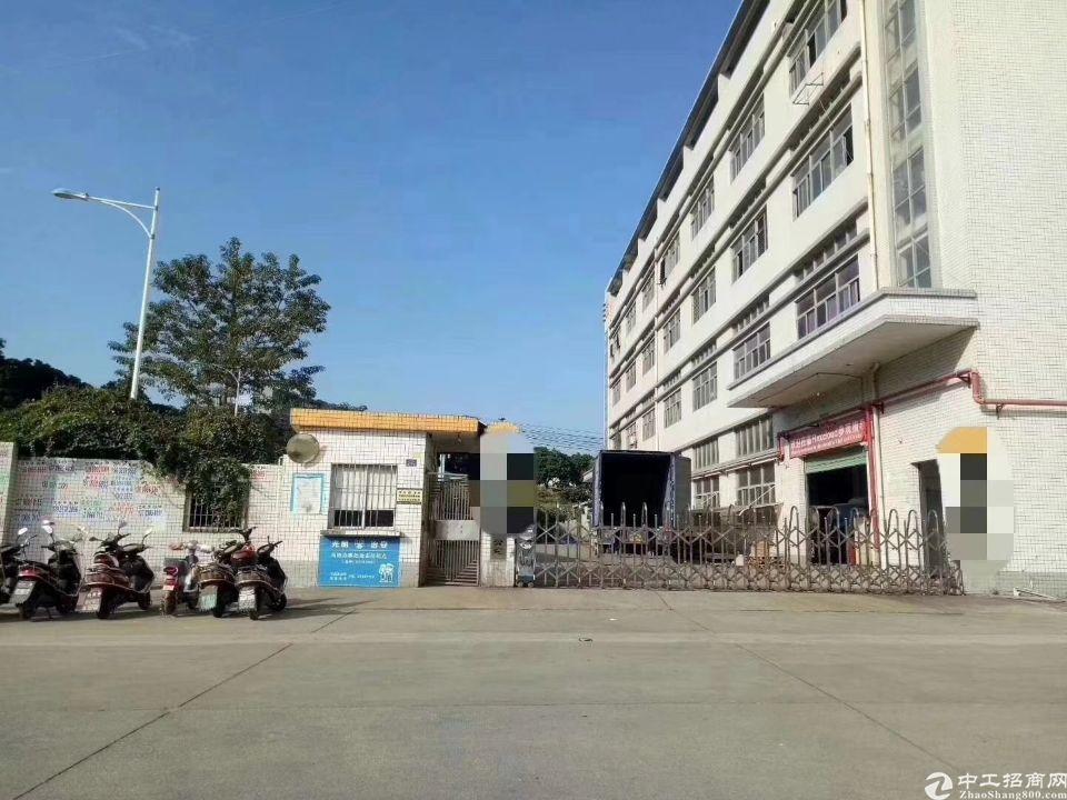 福永107国道附近花园式独院厂房6000平方招租-图5