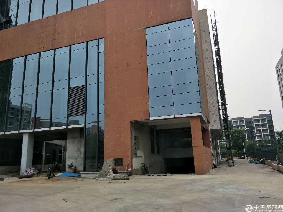 东莞市东坑1000平米国有证厂房出售