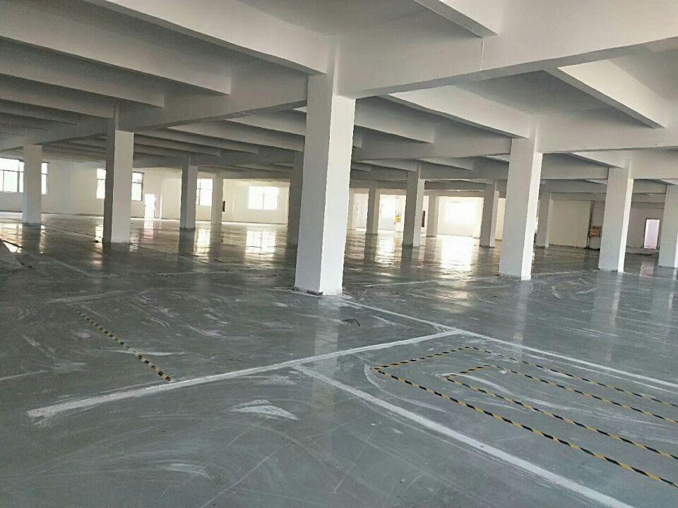 龙华大浪商业中心楼上厂房出租整层3000平厂房仓库出租