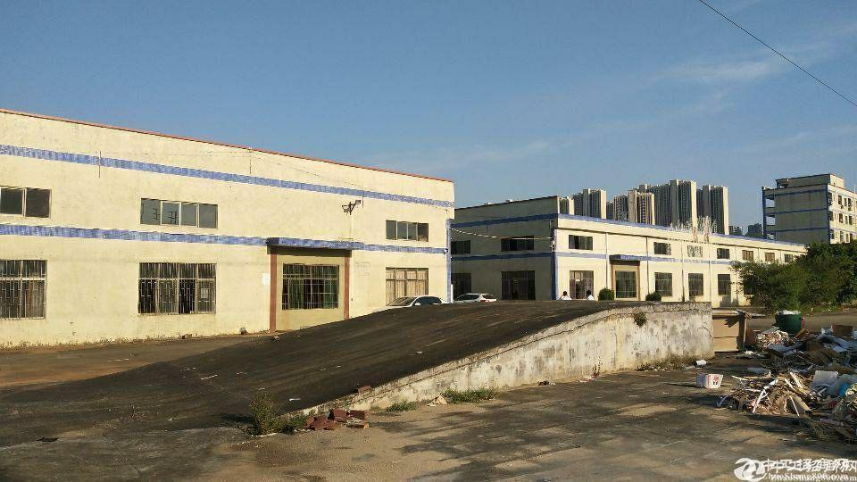 惠州市石湾镇砖墙到顶单一层经典厂房空地超大