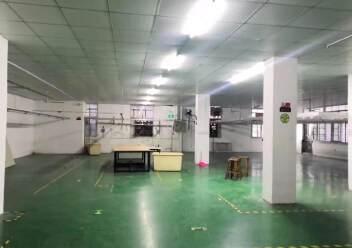 石岩塘头科技园新出楼上精装修435平厂房出租图片2