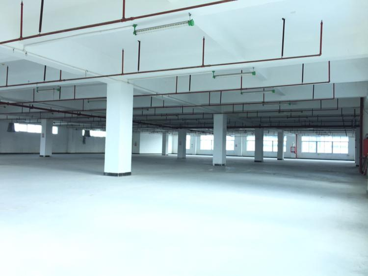 坪山大道边楼上2400平米红本仓库厂房出租