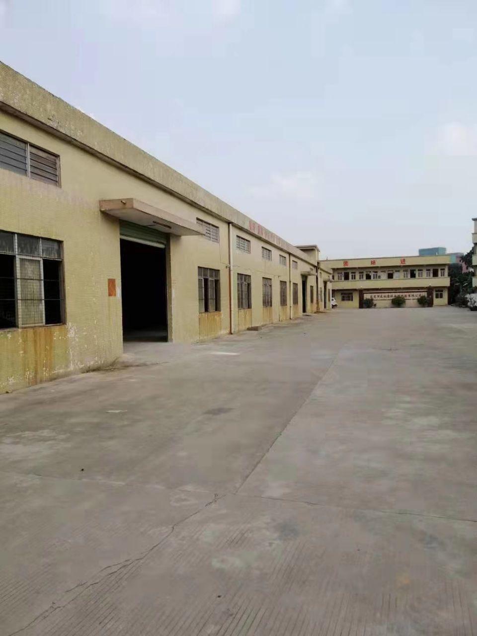 茶山镇新出单一层独院厂房3850平方 厂房