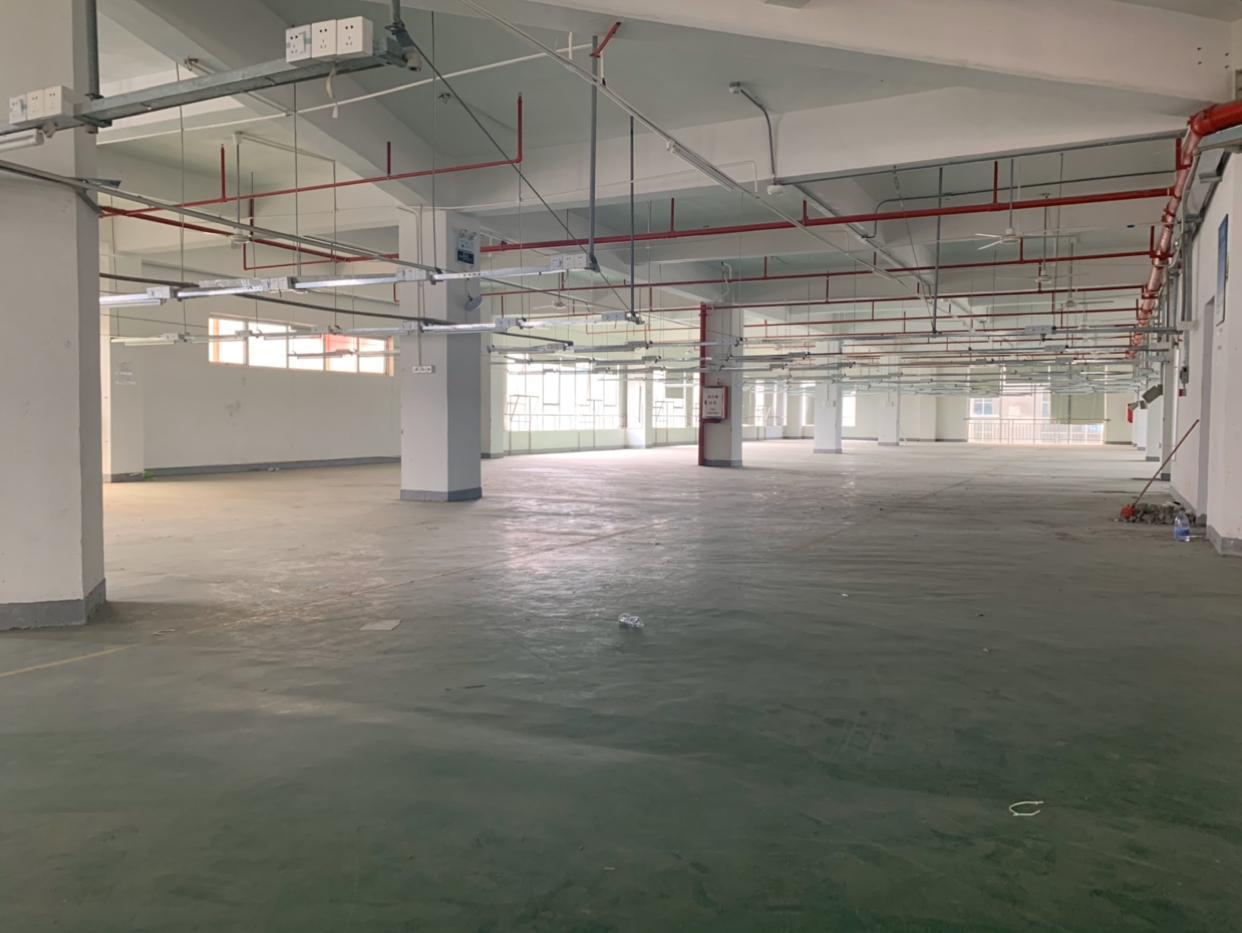 惠阳经济开发区红本独栋厂房10000平方出租-图4