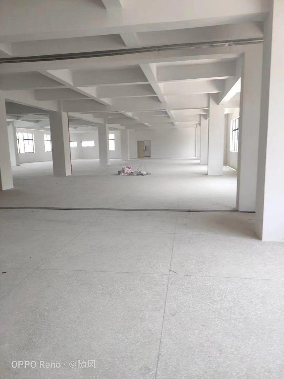 坪地一楼新出标准厂房500平方实际面积合同期长园区空地超大