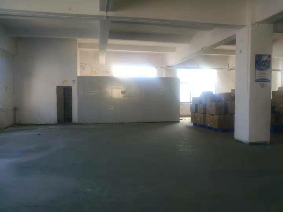 长安镇咸西社区新出楼上800平米标准厂房