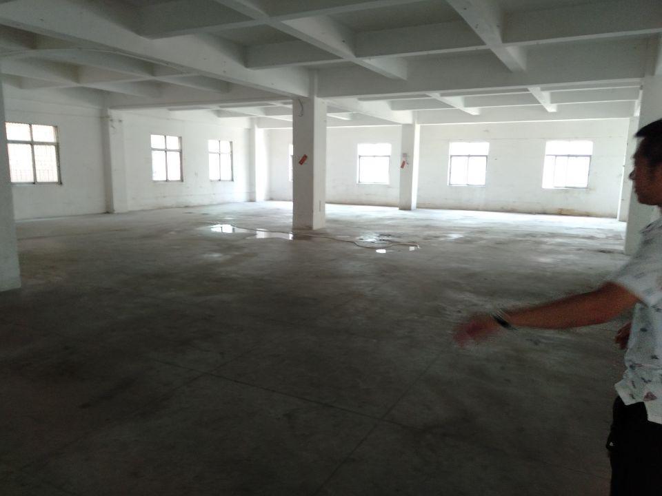 樟木头镇樟洋管理区有标准厂房二楼600平左右厂房出租