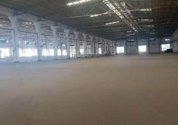 龙华区原业主独门独院钢结构16000平方出租图片1