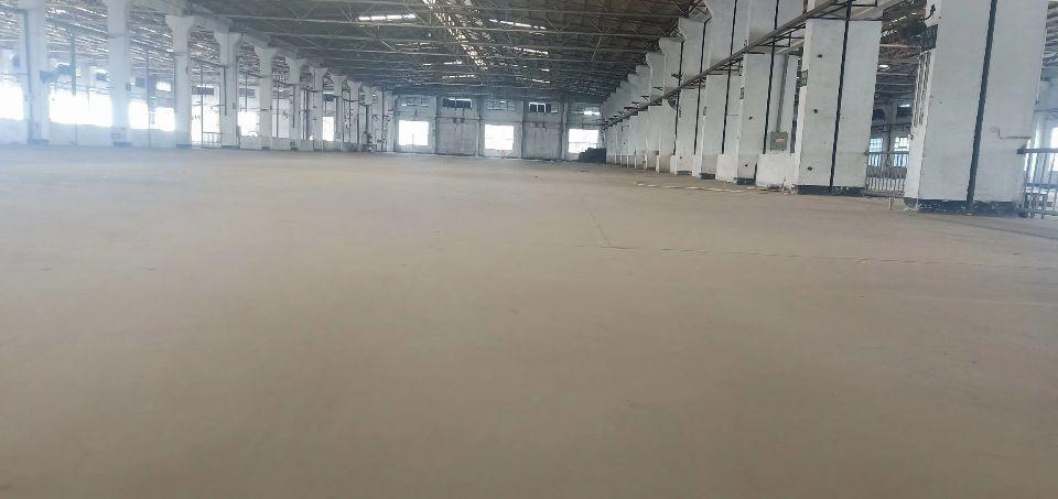 龙华区原业主独门独院钢结构16000平方出租-图6