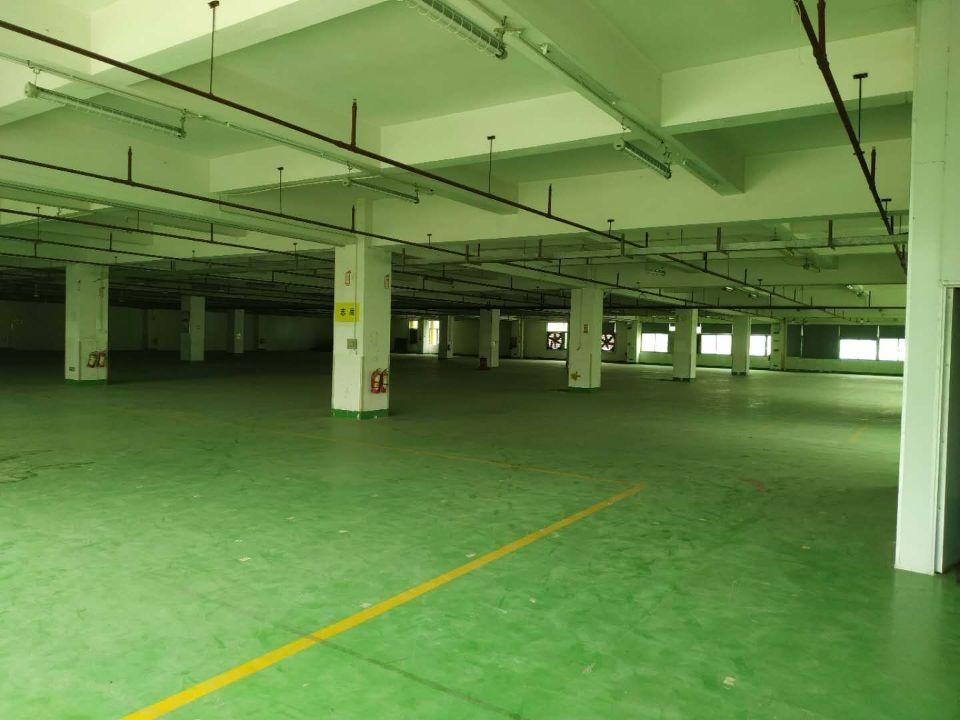 光明楼村新出楼上有地坪漆有消防喷淋厂房2部3吨大货梯卸货平台